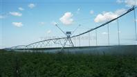 供应维蒙圣菲DPP-312型平移式喷灌机 设备灌溉土豆中
