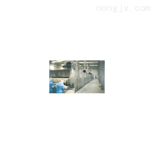 [促銷] 網帶式脫水蔬菜干燥機(DWT-1.2-8)