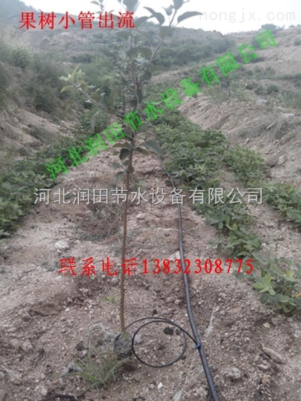 江西赣州市果树16PE支管价格