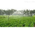 4分外螺纹4分塑料全圆摇臂双嘴喷头 草坪喷头 园林灌溉