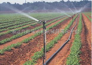 供应果树、蔬菜滴灌带 单翼迷宫滴灌带 厂家长期