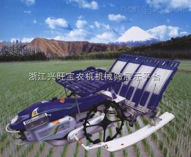 供应插秧机,摆秧机|农业装备技术|山东隆辉机械|新型插秧机