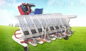 供应新型插秧机价格|摆秧机商|插秧机生产商