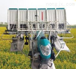 供应插秧机厂家|隆辉水稻插秧机|插秧机生产商|新型插秧机