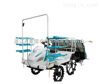 供應水稻插秧機報價|山東隆輝機械|插秧機,擺秧機|插秧機廠家