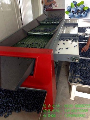 三代-【蓝莓选果机】蓝莓分选机 蓝莓分级机价格