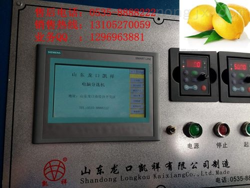 XGJ-DN型-電腦檸檬選果機