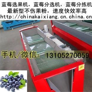 自动分选蓝莓大小机器-三代蓝莓分级机