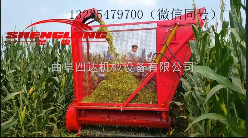鲜玉米秸秆青贮收获机牧草秸秆回收机