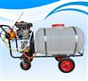 防疫消毒喷雾器打药机 手推式汽油喷雾机