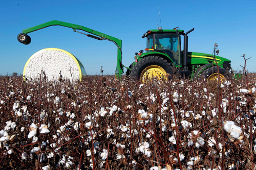 20年我国棉花主产区完成两次转移